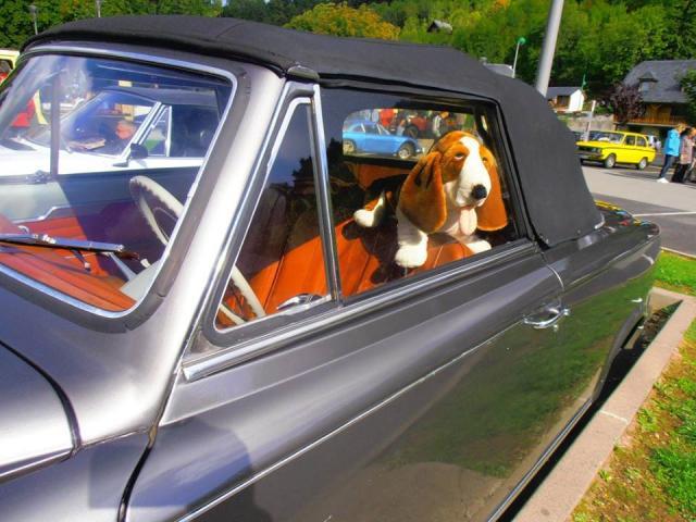 2015 Journée du Patrimoine Automobile 20 09 (27)